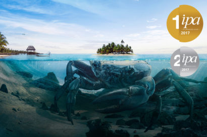 crab_island